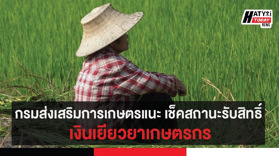 กรมส่งเสริมการเกษตรแนะ เช็คสถานะรับสิทธิ์ เยียวยาเกษตรกร