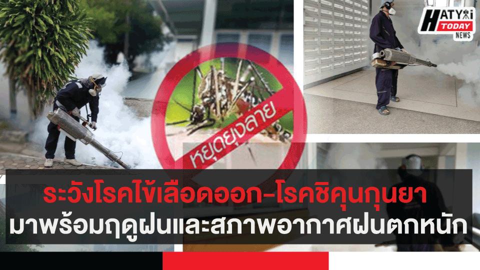 ระวังโรคไข้เลือดออก-โรคชิคุนกุนยา พร้อมฤดูฝน และสภาพอากาศที่มีฝนตกหนักในหลายพื้นที่