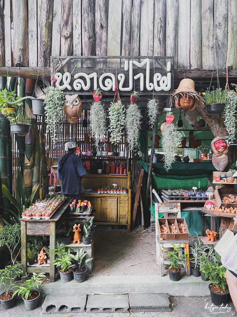 ร้านขายต้นไม้ พัทลุง