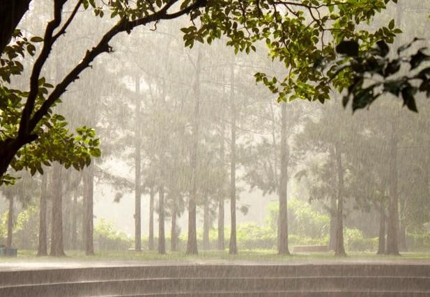พยากรณ์อากาศ จ.สงขลา มีฝนตกร้อยละ 60 ของพื้นที่ คาดว่ามรสุมตะวันตกเฉียงใต้ พัดปกคลุมทะเลอ่าวไทย