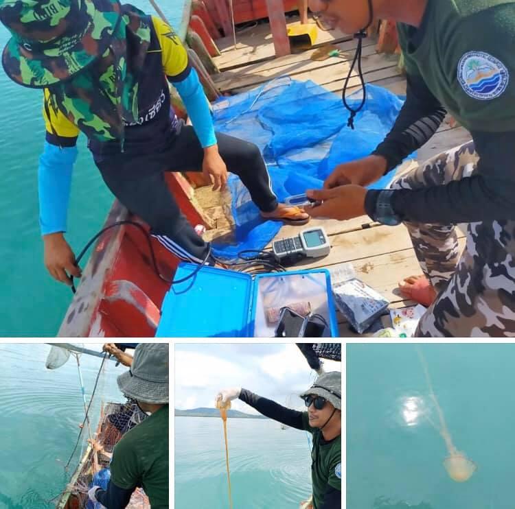 หาดสมิหลา สงขลา ยังไม่พ้นวิกฤตแมงกะพรุนพิษ ยังคงพบเด็กถูกแมงกะพรุนพิษ