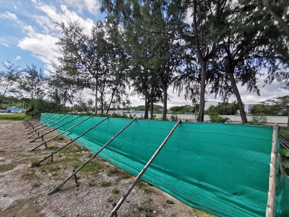 โครงการสาธิตการปลูกป่านิเวศเพื่อลดผลกระทบจกการเพิ่มขึ้นของระดับน้ำทะเล การกัดเซาะชายฝั่งและพายุซัดฝั่ง