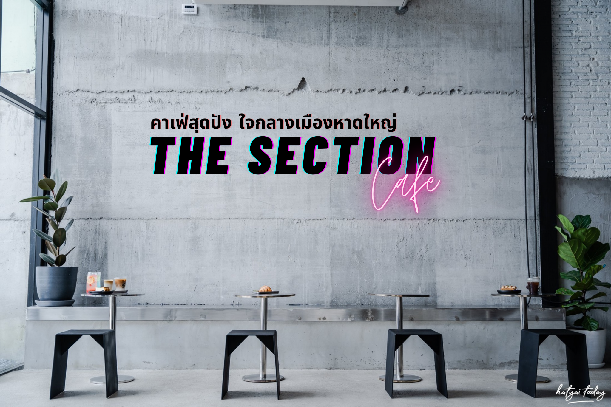 The Section cafe'