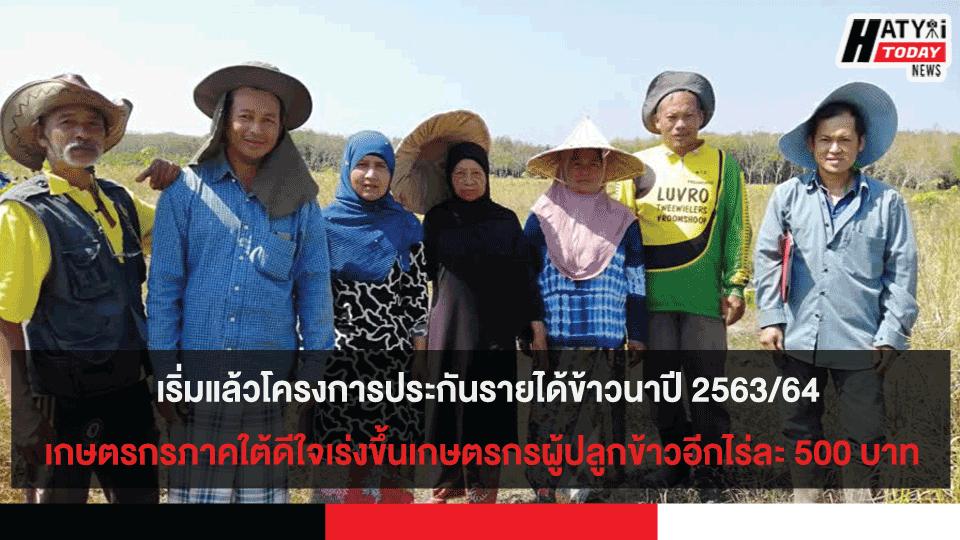 เริ่มแล้วโครงการประกันรายได้ข้าวนาปี 2563/64 เกษตรกรภาคใต้ดีใจเร่งขึ้นเกษตรกรผู้ปลูกข้าวอีกไร่ละ 500 บาท