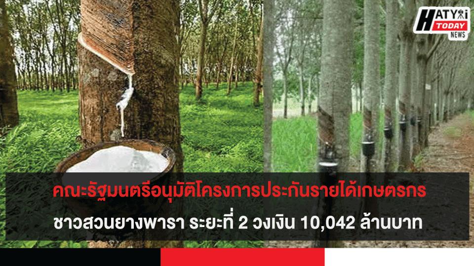 คณะรัฐมนตรีอนุมัติโครงการประกันรายได้เกษตรกรชาวสวนยางพารา ระยะที่ 2 วงเงิน 10,042 ล้านบาท