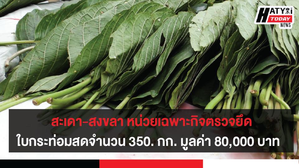 สะเดา-สงขลา หน่วยเฉพาะกิจตรวจยึดใบพืชกระท่อมสดจำนวน350. กก. มูลค่า 80,000 บาท