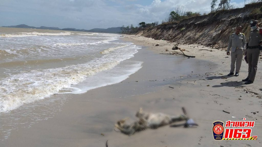 พบร่างผู้เสียชีวิตลอยทะเลมาติดอยู่บนหาดทราย อีก 1 ศพ อยู่ในสภาพเน่าเปื่อยเห็นโครงกระดูก คาดว่าเสียชีวิตมาไม่ต่ำกว่า 10 วัน