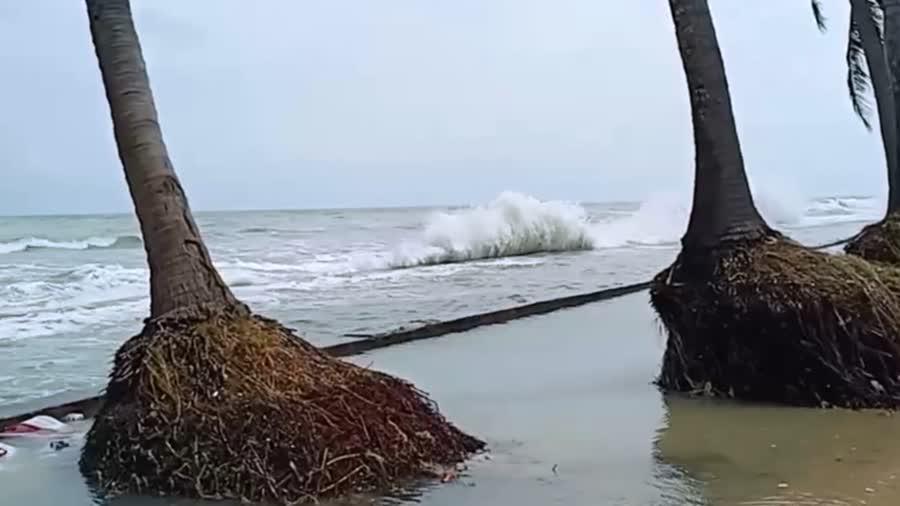 สมาคมประมงสงขลา เตือนเรือประมง พายุกำลังแรงระลอกใหม่จากประเทศจีนจะแผ่เสริมลงมาปกคลุมประเทศไทยตอนบน ในวันที่ 17 - 20 ม.ค. 64