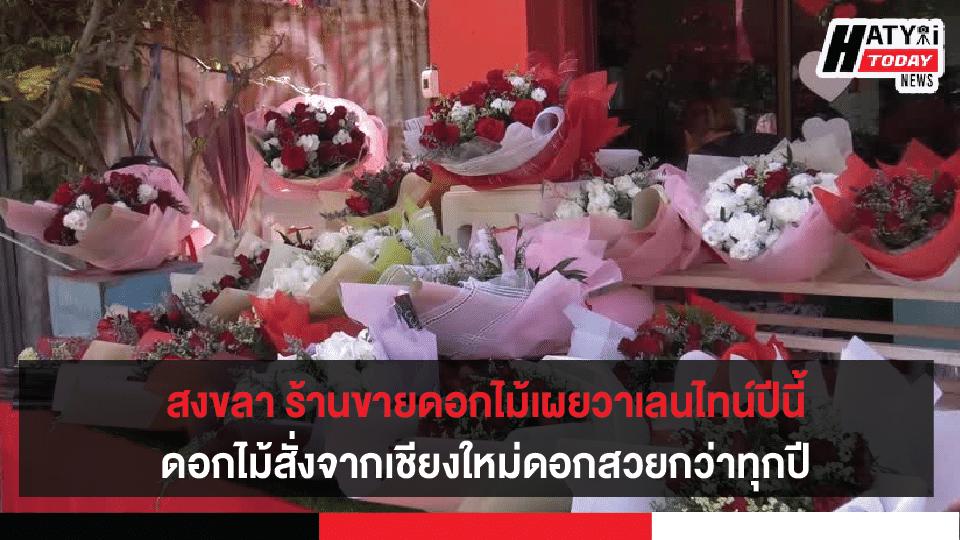 สงขลา ร้านขายดอกไม้เผยวาเลนไทน์ปีนี้ดอกกุหลาบสั่งจากเชียงใหม่ราคาไม่แพงดอกสวยกว่าทุกปี